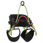 pic of TreeRex Harness sold at WesSpur