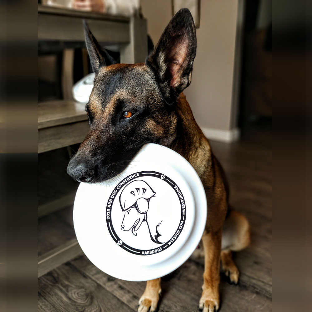 Modeled by Frank the malinois from @arbdogs